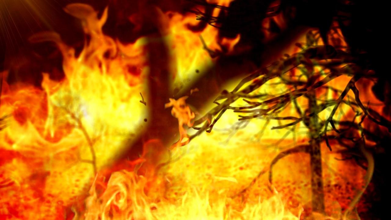 bonfire_382269