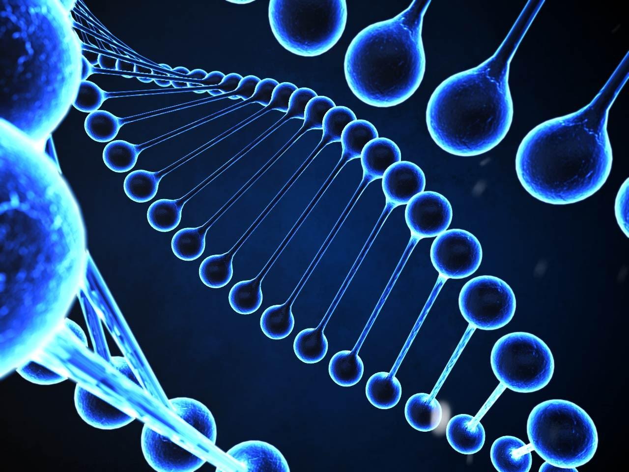 DNA_404311