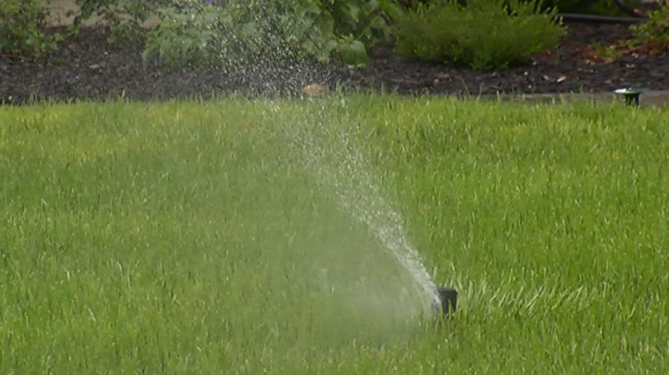 Sprinkler_429900