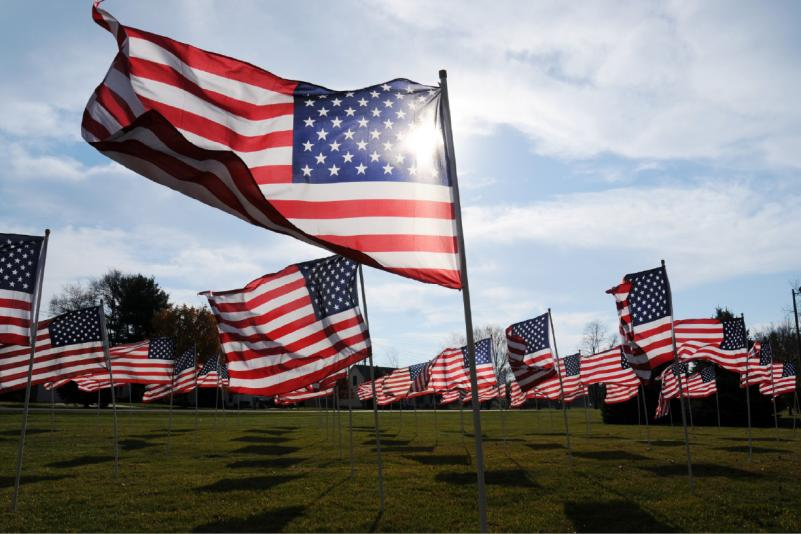 american_flags_on_veterans_day_ap_photo-don_campbell-the_herald_palladium_0_497462