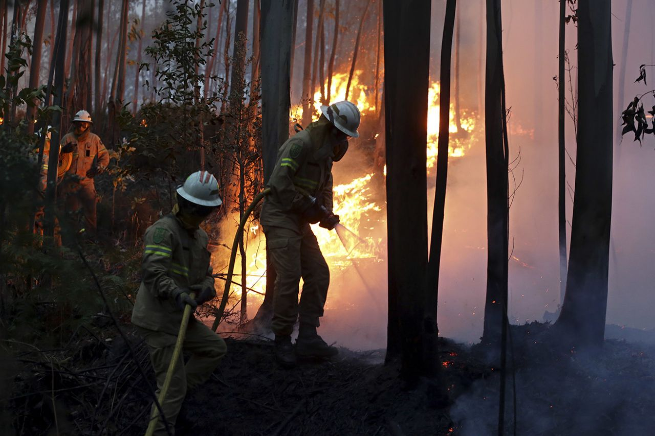 Portugal Fire_596519
