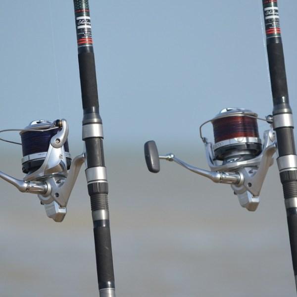 Fishing Rod_563218