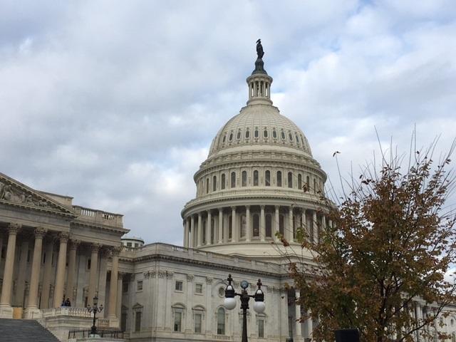 U.S. Capitol_509066