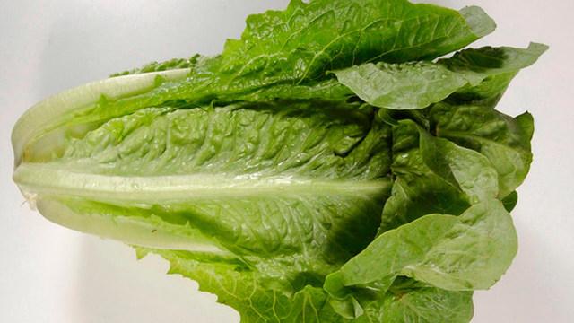 romaine-lettuce_1527868926038_44150412_ver1.0_640_360_1527940909399.jpg