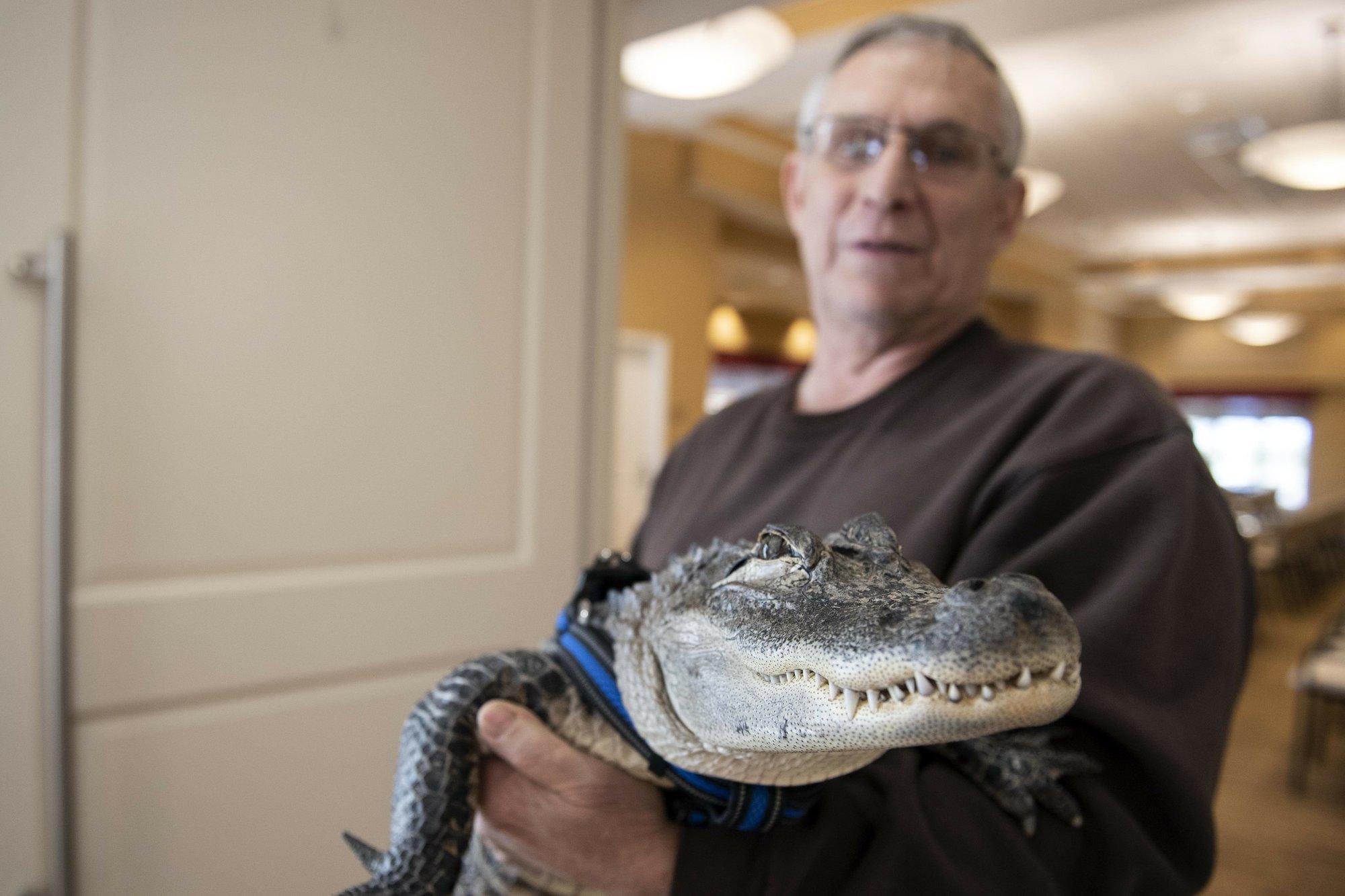 joie henney support alligator ap_1548381291975.jpeg.jpg