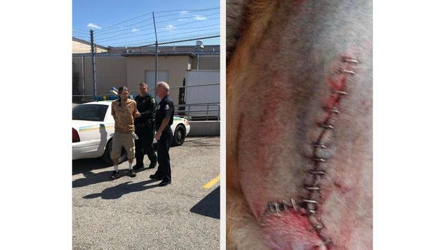 Brevard County groomer arrest_1551196059035.jpg_74999786_ver1.0_640_360_1551204047302.jpg.jpg