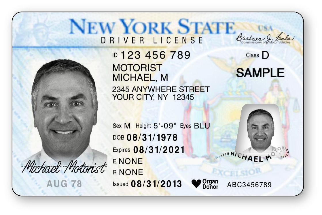 Driver's License Example