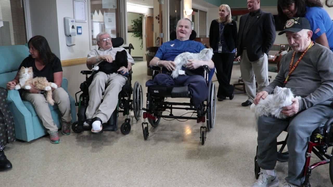 Stratton VA helps veterans with robot pets