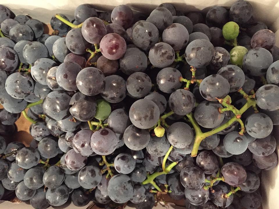 grapes-1649679_960_720_1556820794904.jpg