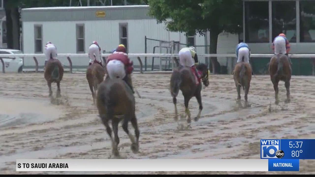 NY Legislature holds hearing on race horse protection