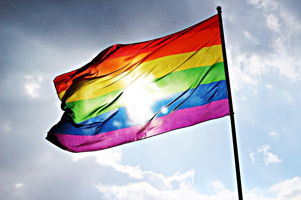 Pride Flag_671384