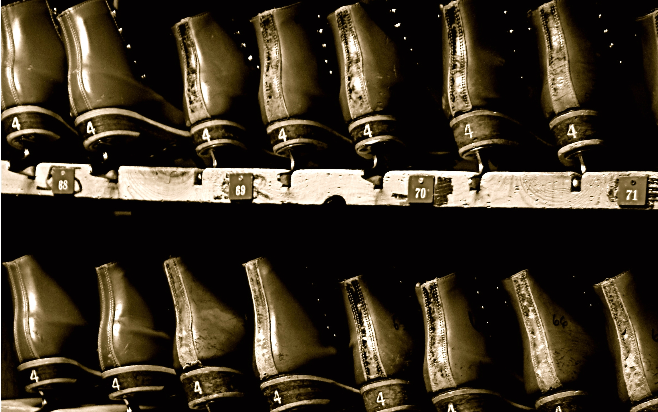 Rows of ice skates on shelves in black and white