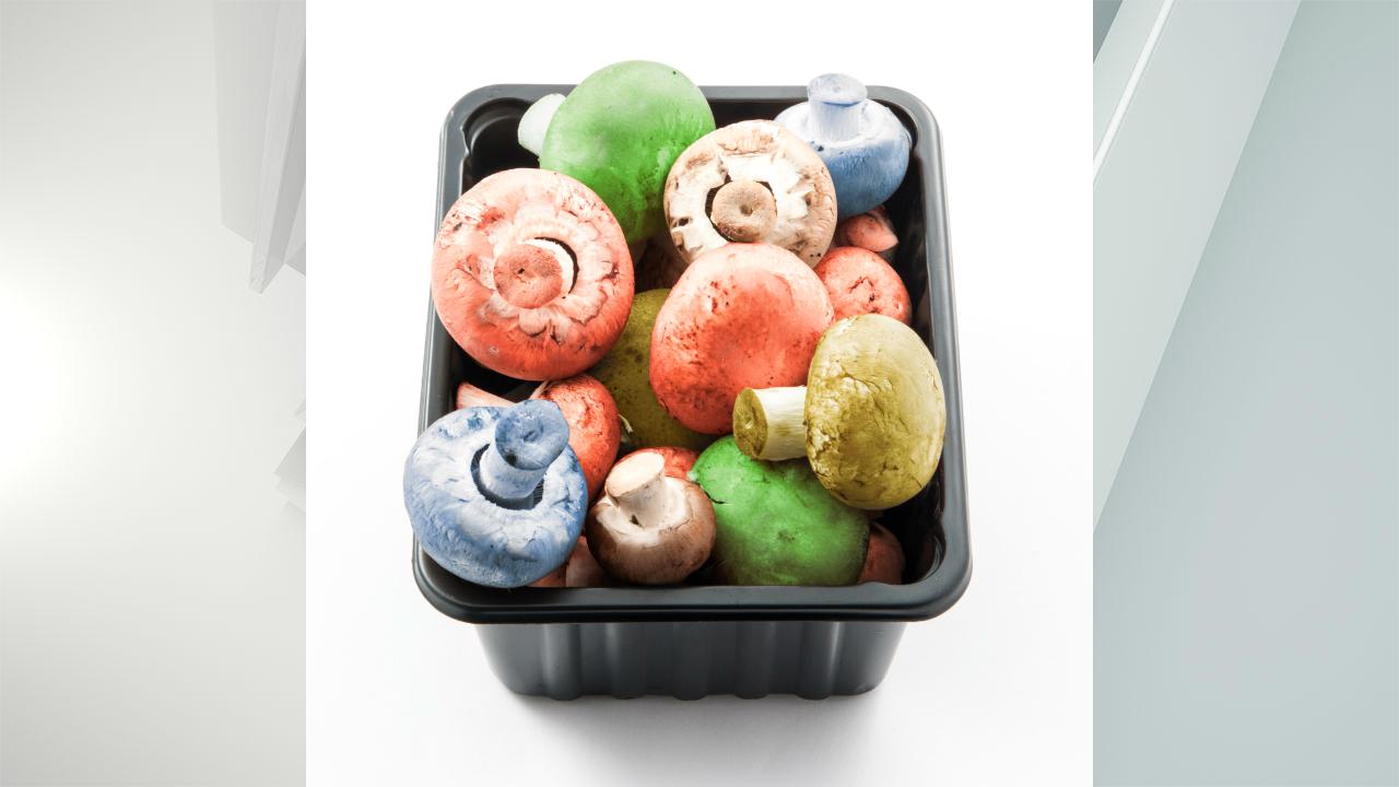 colored button mushrooms