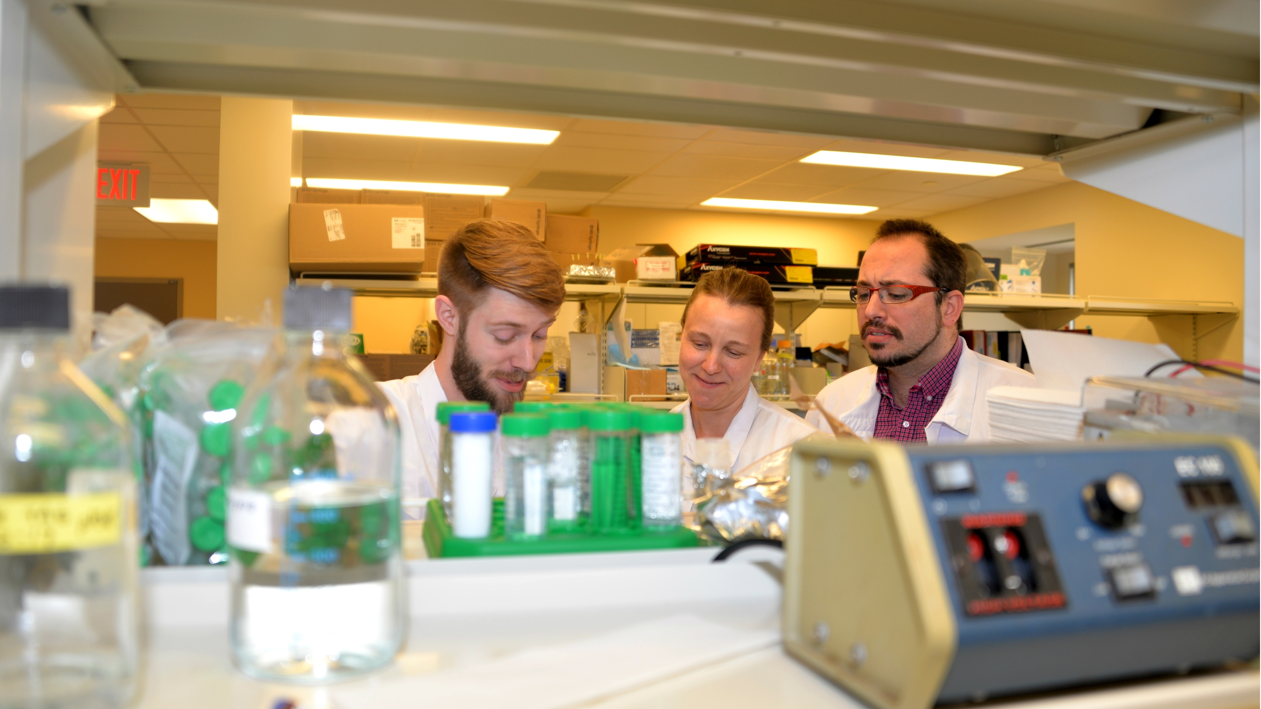 scientists study nerve damage repair