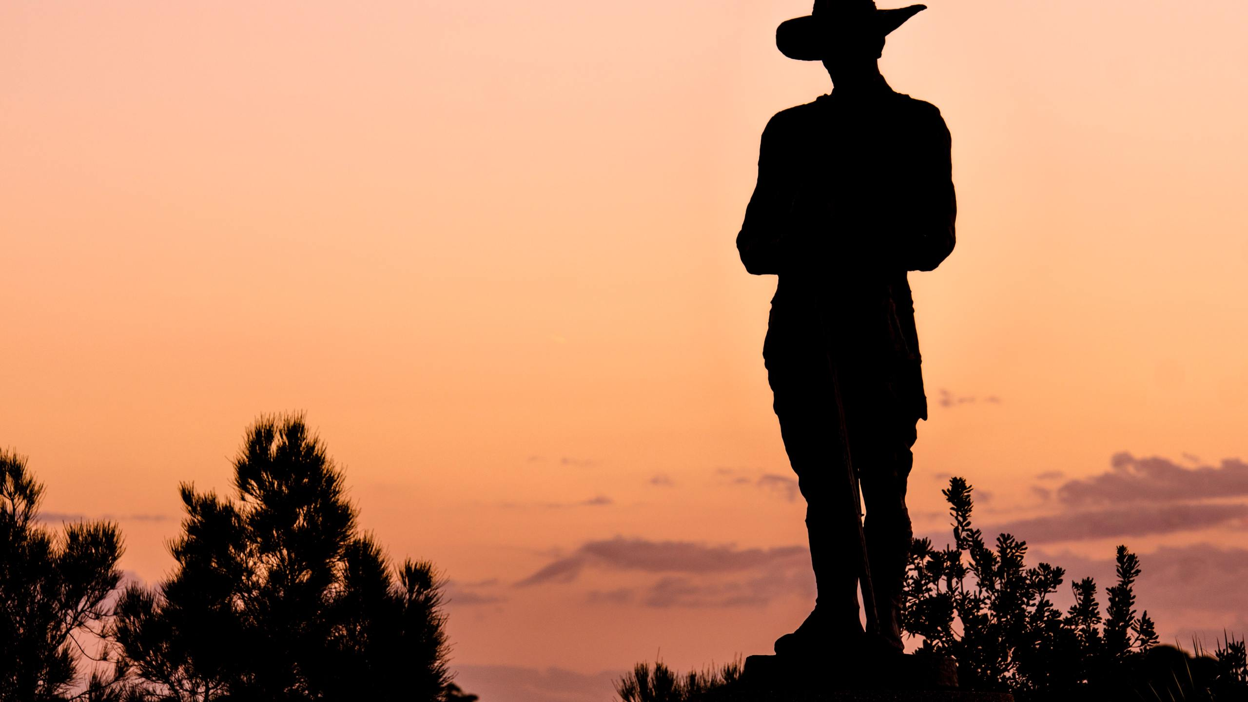 sunset silhouette forest ranger
