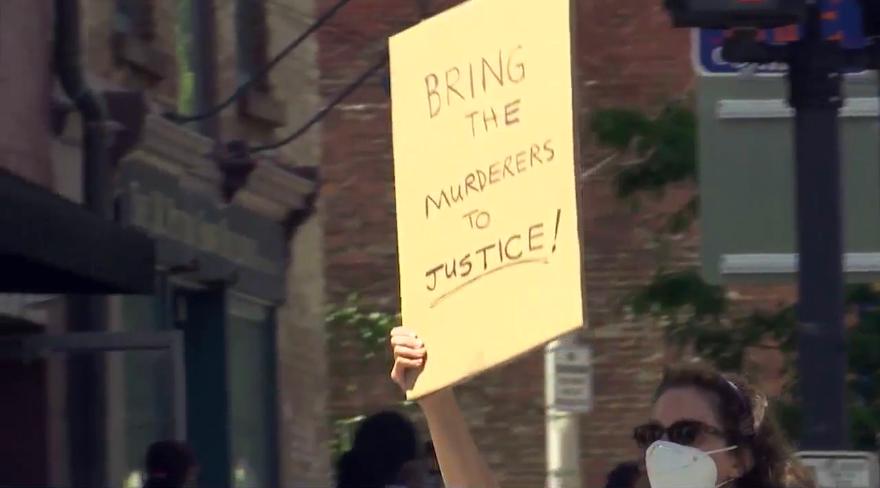 Albany Protests