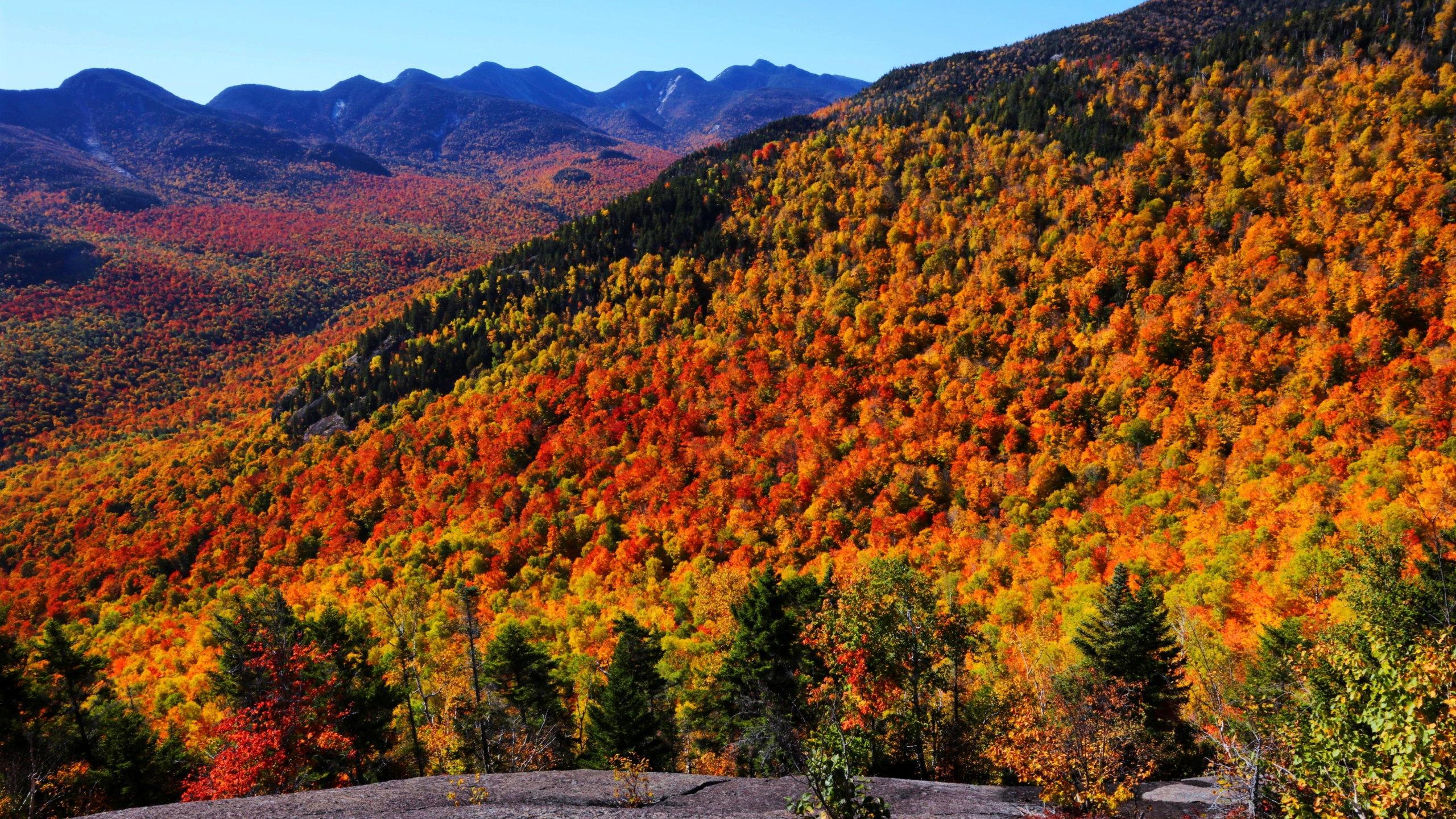 Fall foliage in Adirondack Park