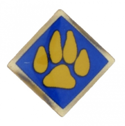 Recalled boy scout pin with yellow paw on blue