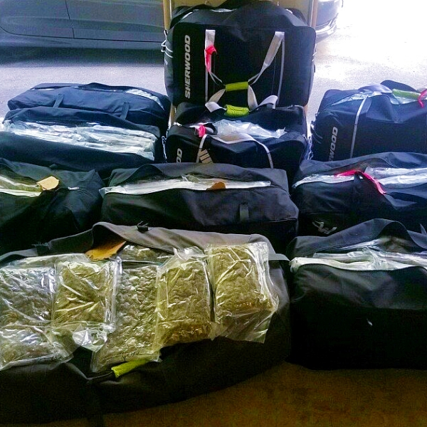 471 pounds of marijuana confiscated by police