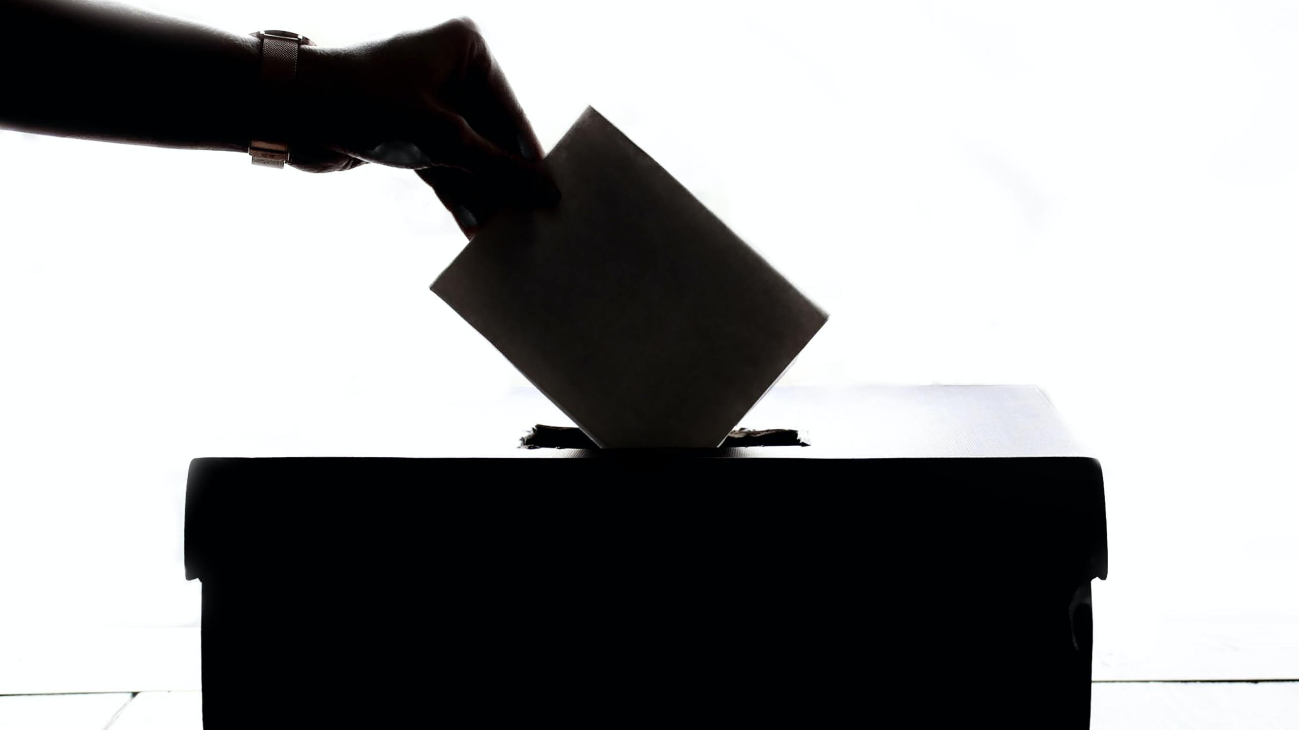 Hand dropping vote in ballot box