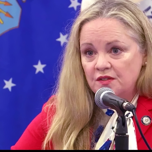 Albany County Department of Health Commissioner Dr. Elizabeth Whalen