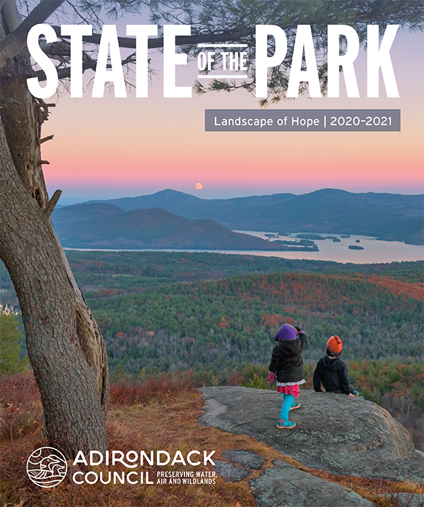 State of the Park 2020 cover, two kids observing a mountain sunset from a cliff's edge