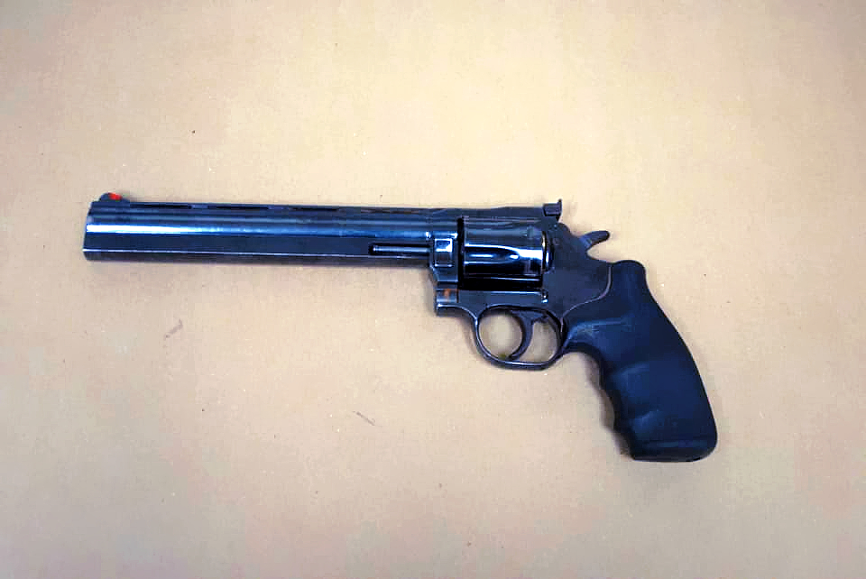 Gun recovered by Albany Police