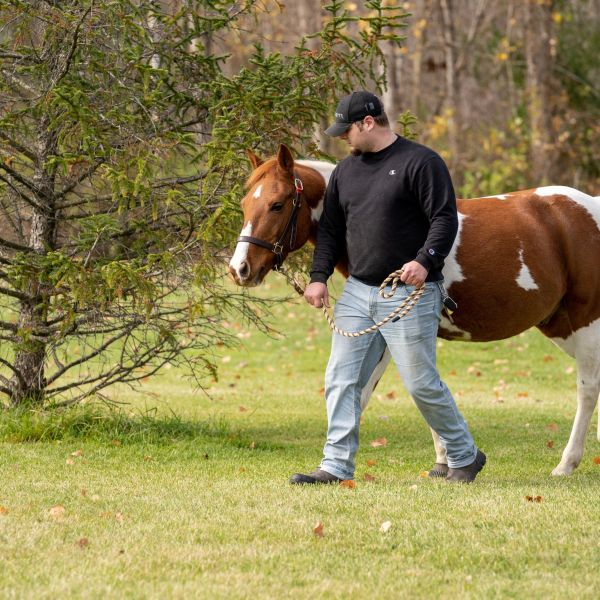 Therapeutic Horsemanship Veterans Program. (SUNY Cobleskill)