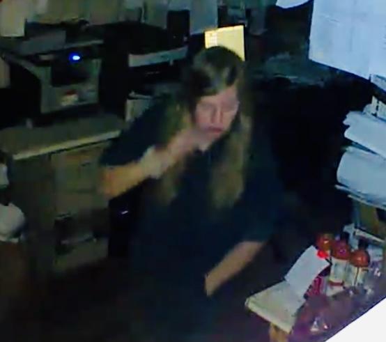 Burglary surveillance footage