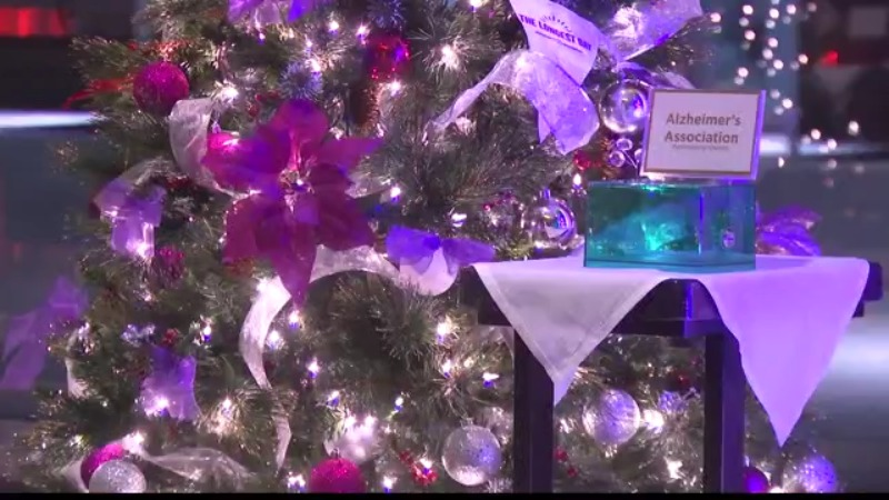 holiday trees of hope schenectady 2020