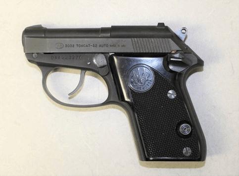 Buffalo airport gun