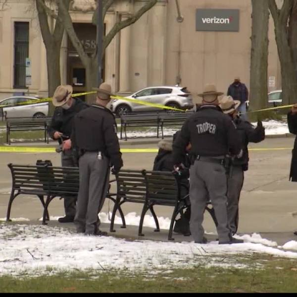 east capitol park fight stabbing albany