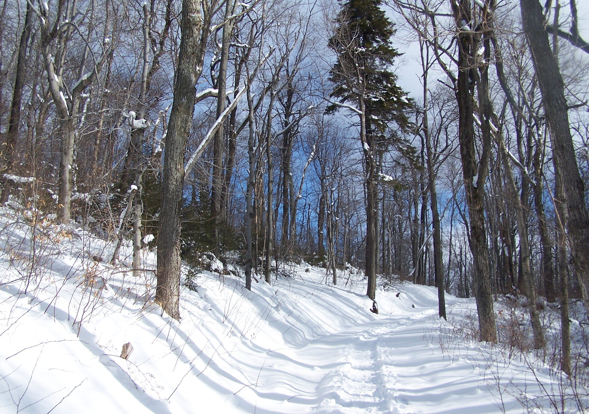 A snowy trail at Hunter Mountain in 2010. (Andy Arthur / Flickr / CC BY 2.0)