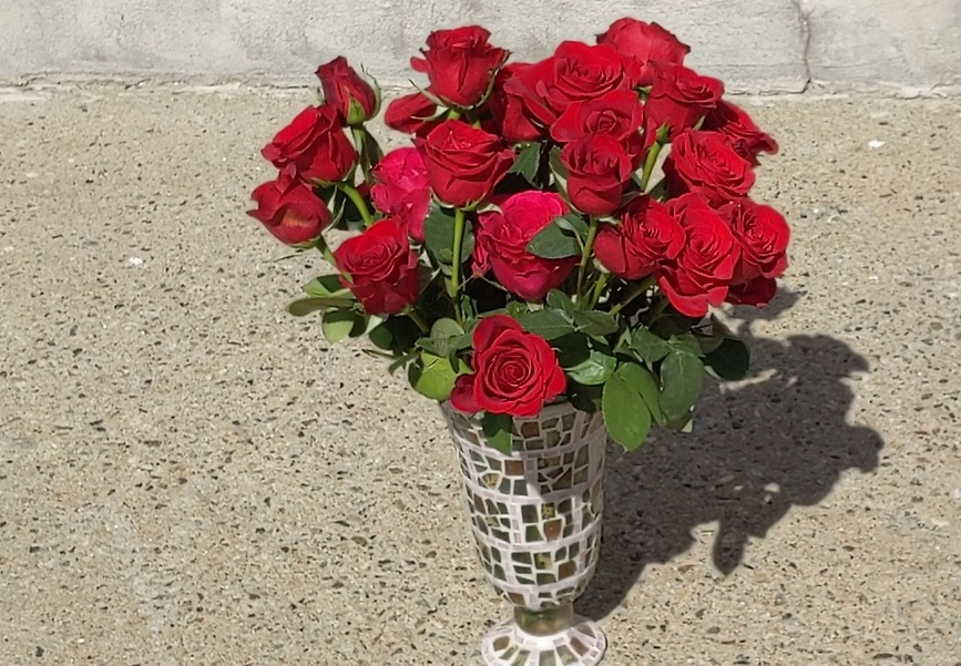 elizabethtown roses