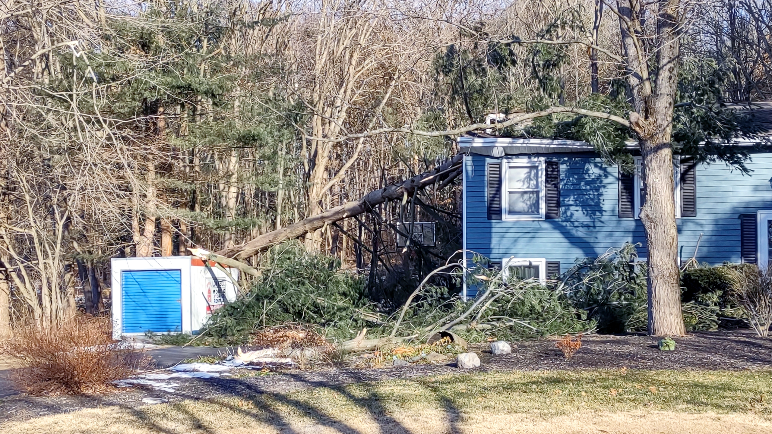 Tree damage to a Rensselaer County home after a windstorm