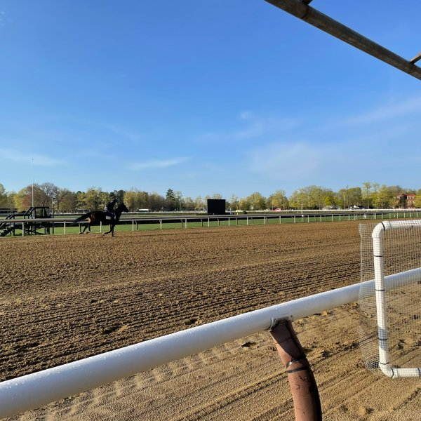 Spring training at Saratoga Race Course