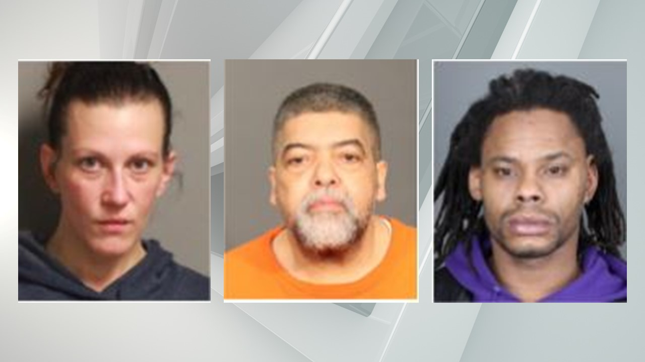 Jessica Burgess, Pedro Vasquez, and John Whichard were arrested by the Albany Sheriff's Office on multiple drug charges.