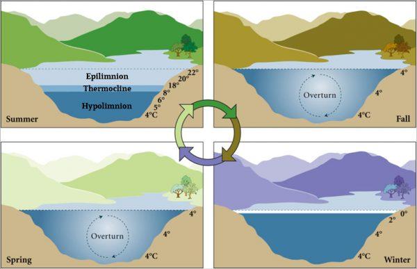 pattern of mixing lake george