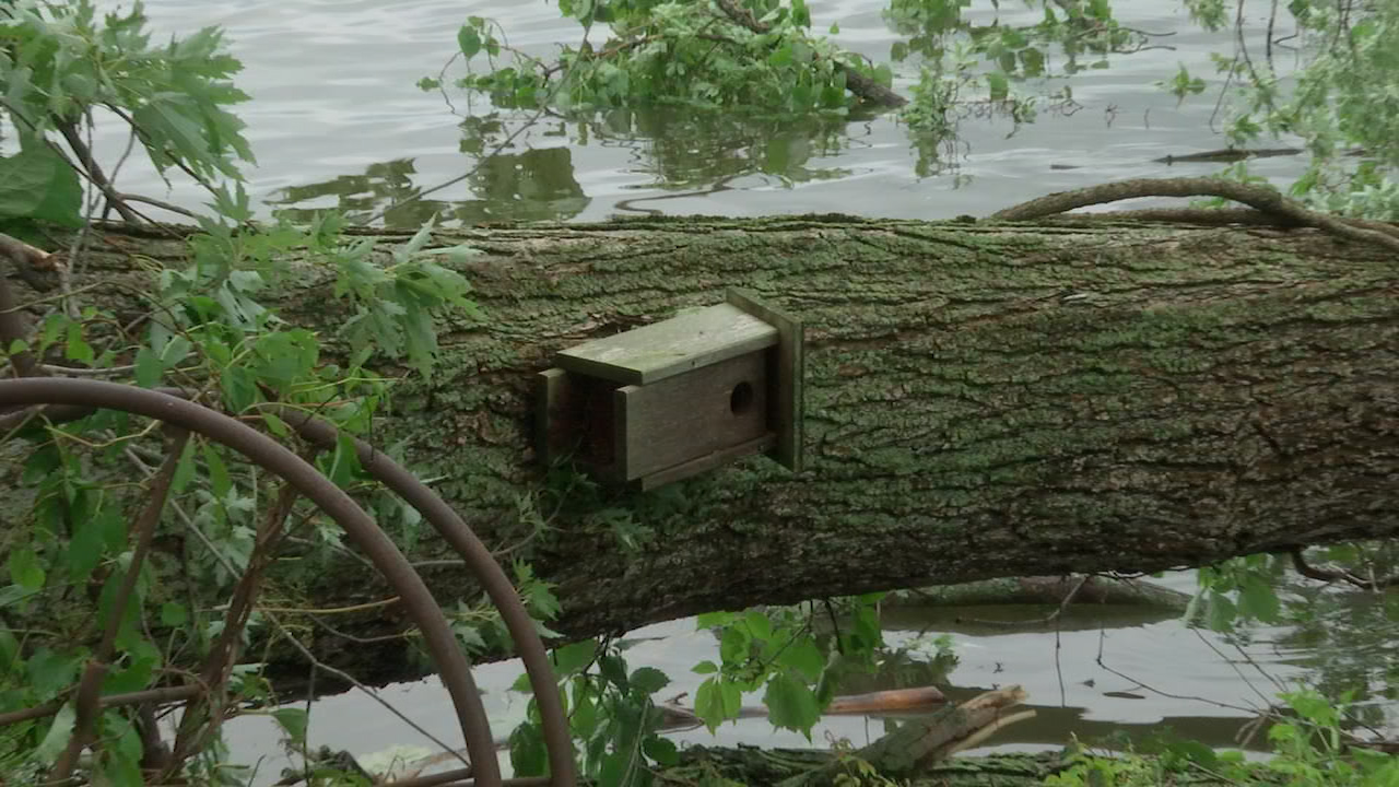 Residents are dealing with storm aftermath in Coxsackie