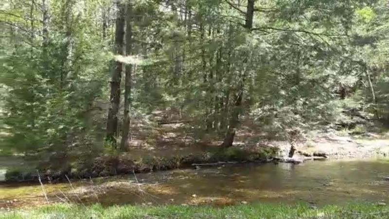 nature creek outdoors