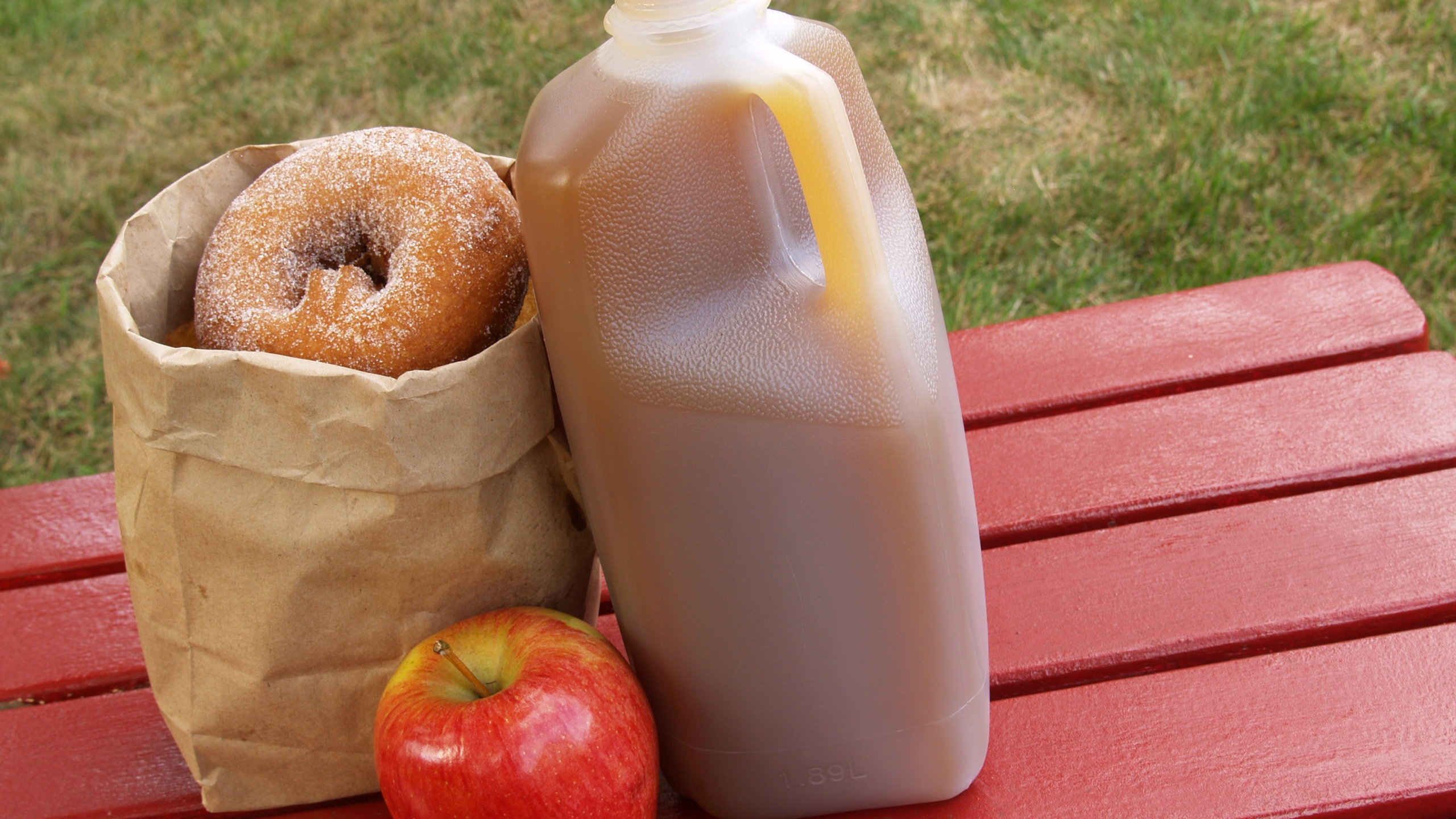 Apple picking: Where to pick a peck in the Capital Region