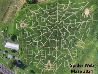 schuyler farm spider web maze